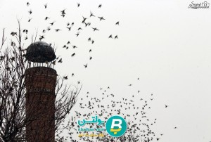 معرفی موزه قرآن و کتابت 4