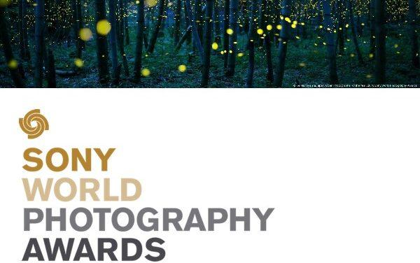 درخشش عکاسان تبریزی در مسابقه جهانی عکاسی جایزه سونی